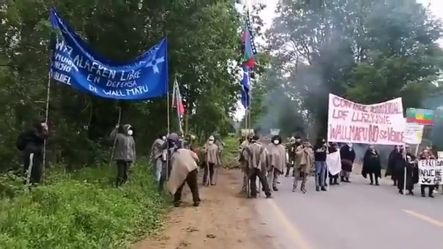 Panguipulli Protests for Mapuche Land Back