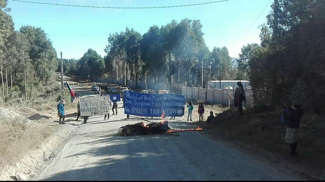 Chilean Mapuche Community in Los Pellines Burn Barricades Against Deforestation & Land Theft