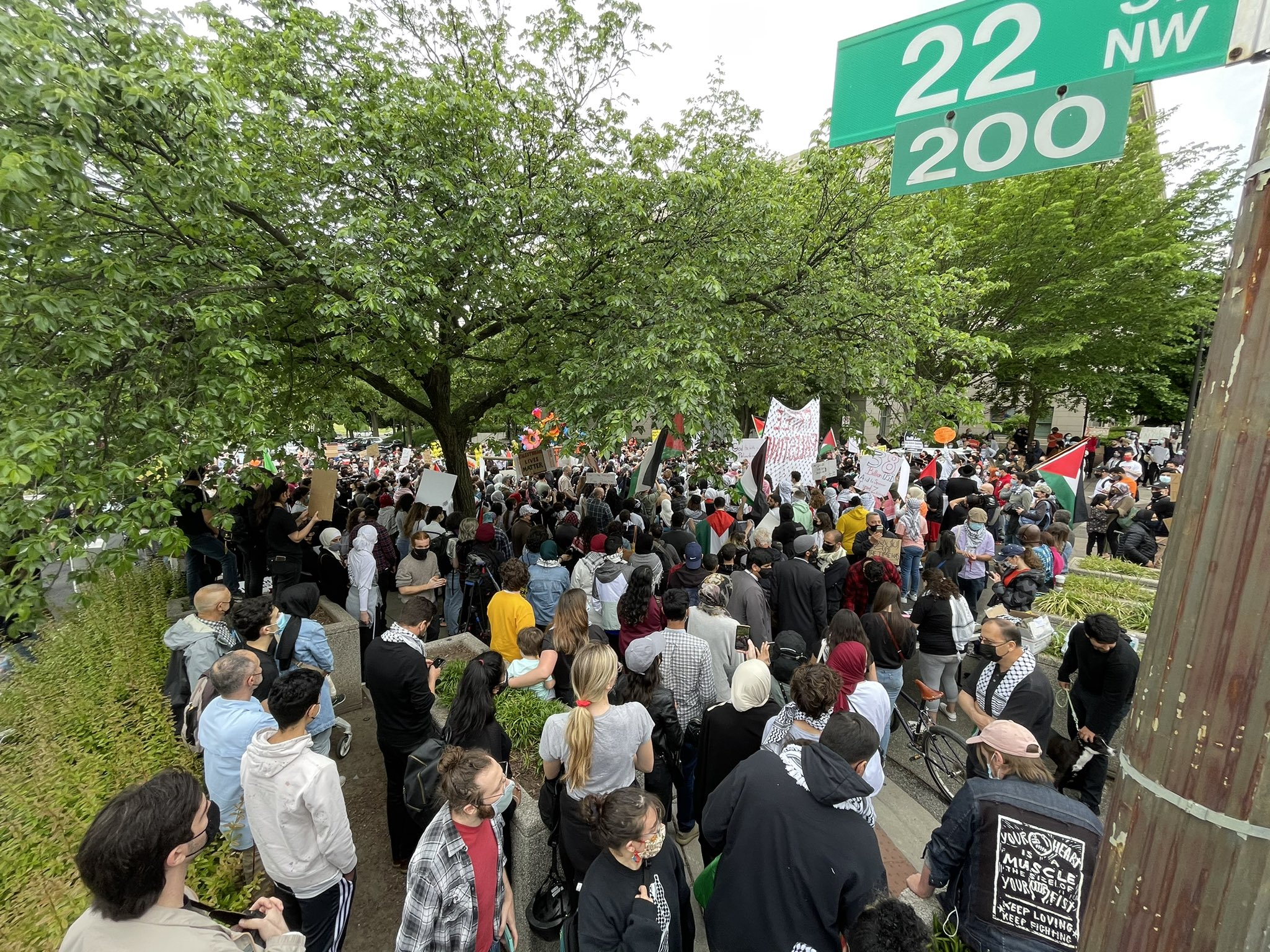 Hundreds in Washington D.C. Protest in Solidarity With Palestine