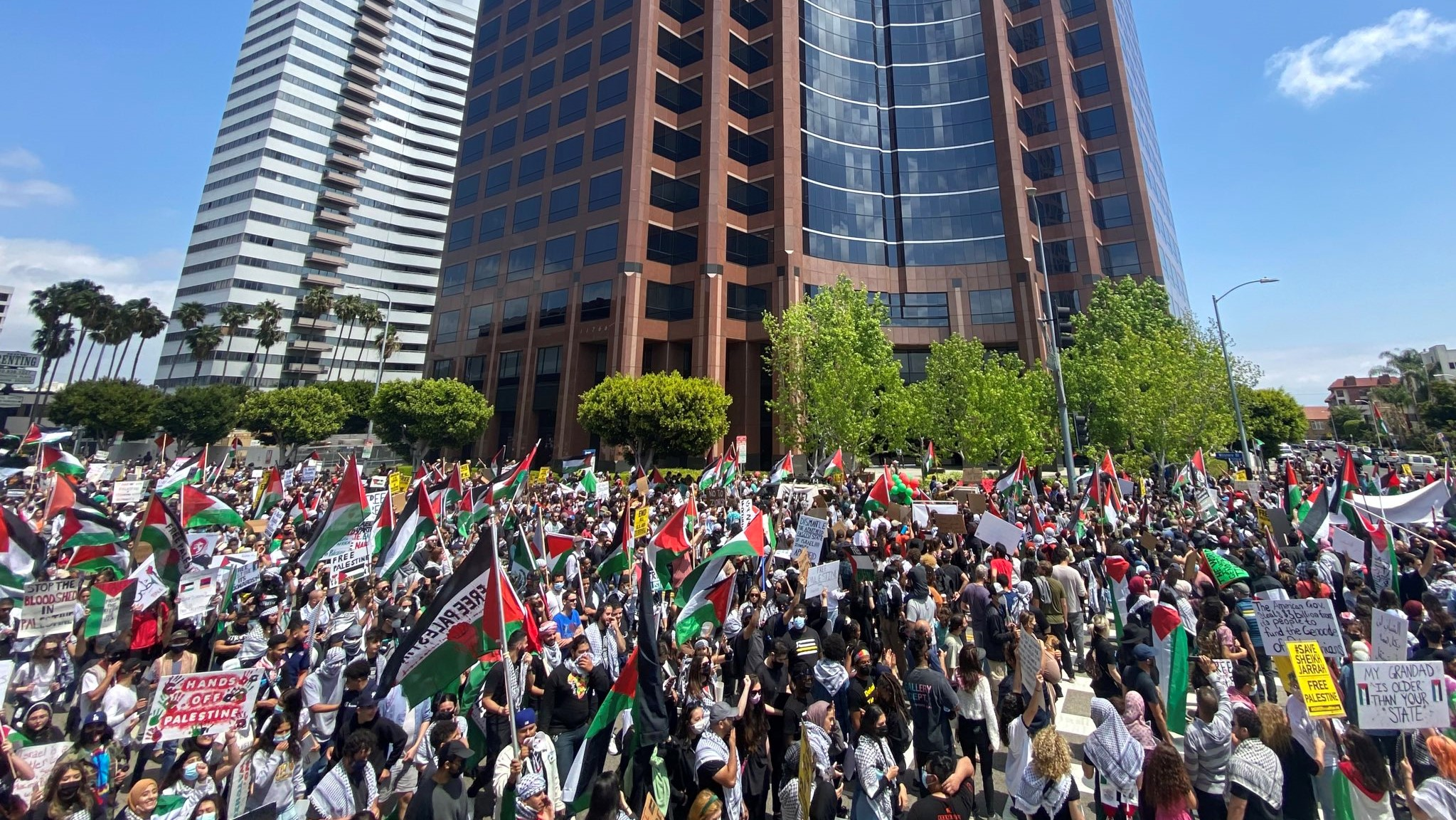 Thousands in Los Angeles Protest in Solidarity With Palestine