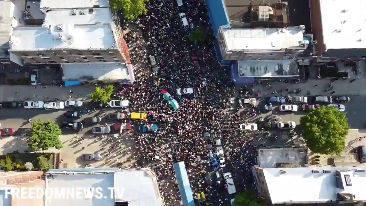 Thousands of Protesters in New York March in Support of Palestine